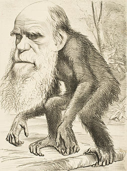 255px-Editorial_cartoon_depicting_Charles_Darwin_as_an_ape_(1871).jpg